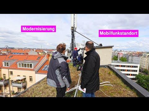 Single party freiburg 2019