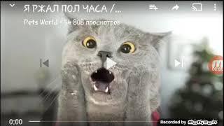 Самое смешное видео !!!!!