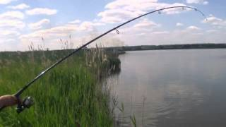 Рыбалка в уфе платные озера на карпа