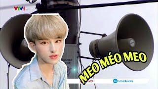 Khi tiếng mèo méo meo của Trần Đức Bo được lên đài phát thanh   PVC E𝕟𝕥𝕖𝕣𝕥𝕒𝕚𝕟𝕞𝕖𝕟𝕥