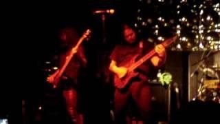 Evergrey - More Than Ever (Chihuahua)