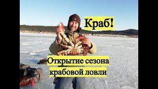 Краб! Открытие сезона крабовой ловли
