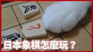 玩象棋學日文,為何日本將棋不用顏色分敵我?日本人的獨特文化|好倫|好日本#15