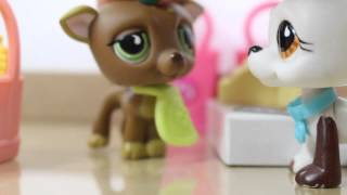 ❀ LPS: Behind the Scenes (Grocery Store)