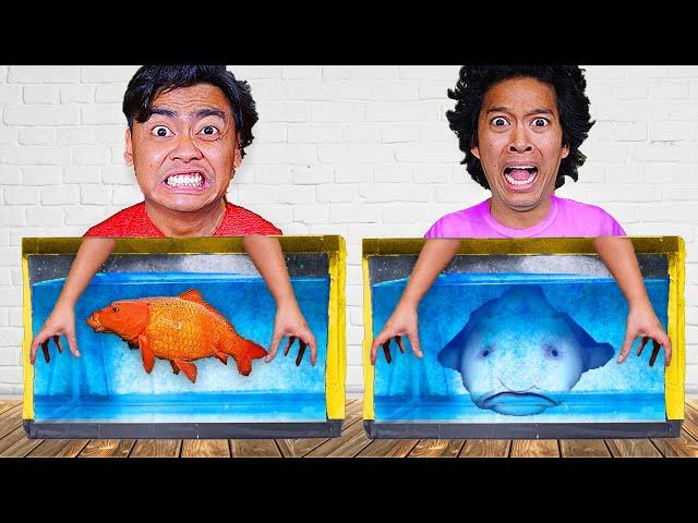 Don't Choose The WRONG Aquarium - Challenge