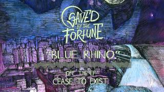 Video Saved By The Fortune - Blue Rhino