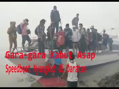 Akibat Kabut Asap Pekat, Speed Boat Tabrak Bibir Pantai di Pelalawan Riau
