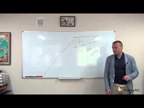 Master forex trader system
