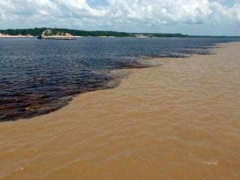 Слияние Амазонки и Риу Негру. Confluence