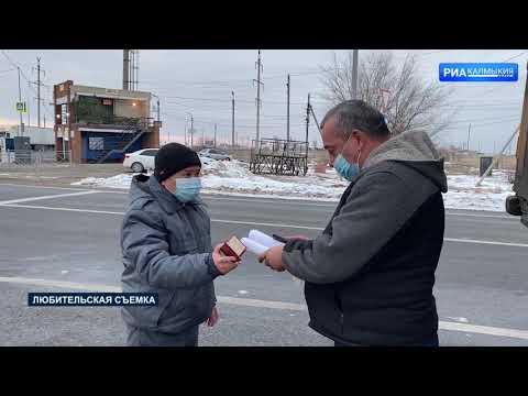 Управлением Россельхознадзора на территории Республики Калмыкия выявлены случаи ввоза хвойных деревьев без карантинных сертификатов