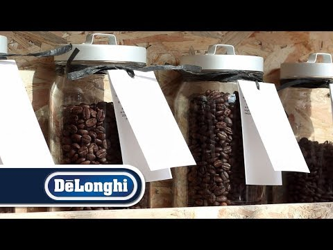 Where to buy coffee beans | De'Longhi | The excellence of Italian roasters