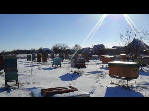 Зимние страсти весной!!! мороз, снег и солнце на пасеке
