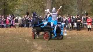 preview picture of video 'Hubertus 2011r. w Technikum Hodowli Koni w Wolborzu.flv'