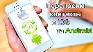 Смотреть онлайн Как скопировать, скачать, и перенести контакты с Айфон на Андроид и обратно