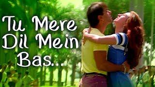 Tu Mere Dil Mein Bas Ja | Salman Khan | Karishma Kapoor