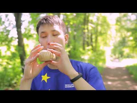 Ode to Joy on Kyrgyz national instruments