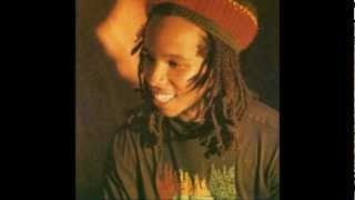 Ziggy Marley and the Melody Makers - Tumblin Down 12 Inch Remix (Tom Tom Remix))