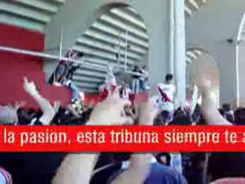 """""""los borrachos del tablon la que fuma marihuana y toma cocaina"""" Barra: Los Borrachos del Tablón • Club: River Plate"""