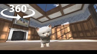 360° VR cat Kitten Video Pet #360video