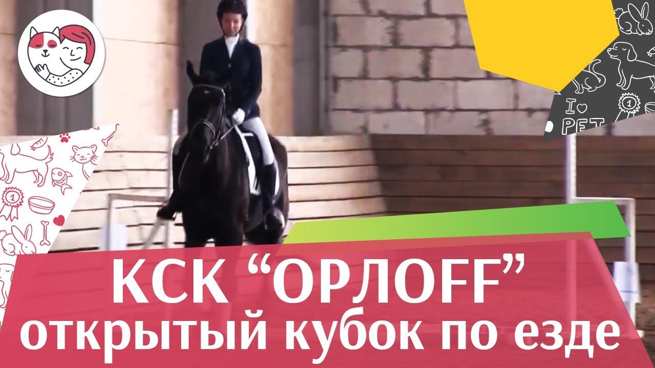 Открытый кубок КСК Орлоff  Кавалетти на  ilikepet