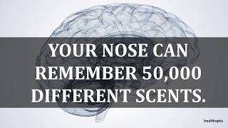 PSYCHOLOGICAL FACTS THAT WILL BLOW YOUR MIND