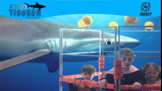 DIA 2 Expo Tiburon100