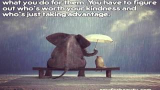 Best Quotes About Kindness
