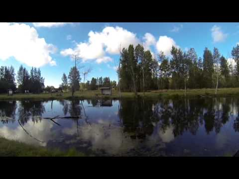 Oregon Bass fishing at the ponds