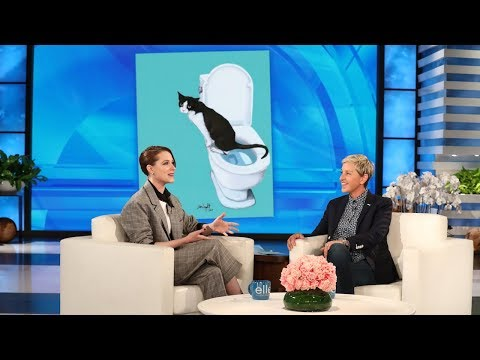Evan Rachel Wood's Cat Taught Himself to Use the Toilet