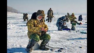 Настрой для ловли окуня зимой