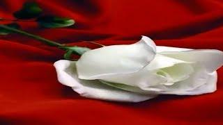 Günaydın Mesajları, Sevgiliye Aşk Dolu Romantik Günaydın Sözleri Ve Mesajları