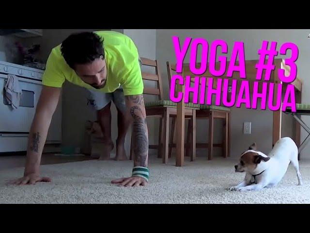 Nic and Pancho Yoga #3