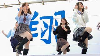 TW 0:00 / 5:31 [4K] 女子大学生 制服ダンス アイドル K-POP 学園祭 ダンス部