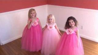 Tutu Skirt & Flower Girl Dress For Little Girls Dress Up Costume, Birthday Party Cute Fluffy Tutu.