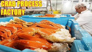 Jak rybak zarabia miliony dolarów na łowieniu kraba królewskiego 🦀 - w nowoczesnej fabryce przetwórstwa krabów