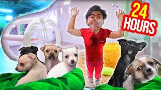 Trapped in a BUBBLE TENT with PUPPIES for 24 Hours!