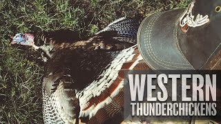 Hunting Western Turkeys In Wyoming!