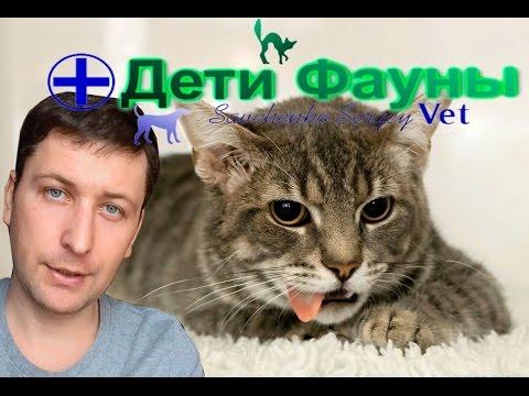 Вир гепатит с мкб 10