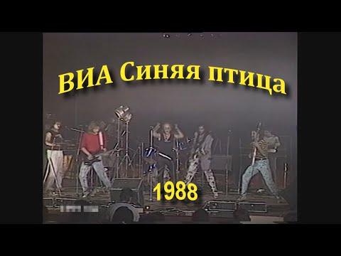 Синяя птица 1988 // Концерт //