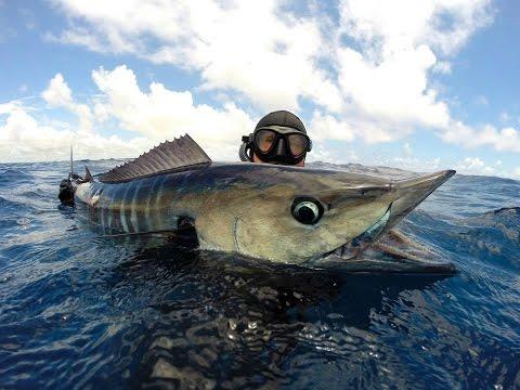 Slitta per pesca invernale