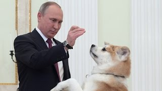 'She is being a guard dog' - Putin jokes as his pet barks at Japanese journalists