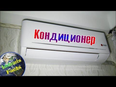 Samica patogen Wołgograd