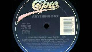 ANYTHING BOX - Living In Oblivion (The Box Mix) - 1990