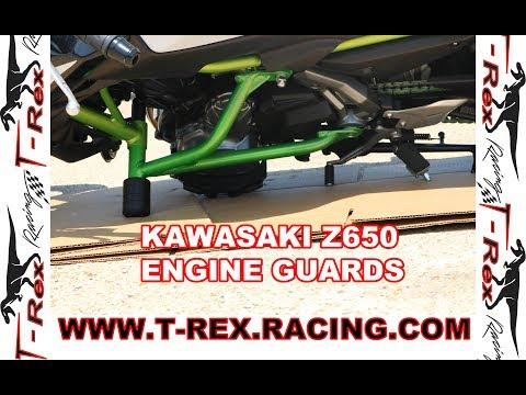 T-Rex Racing 2017-2019 Kawasaki Z650 Z 650 Engine Crash