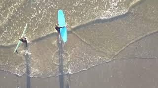Surfing in Tofino, British Columbia