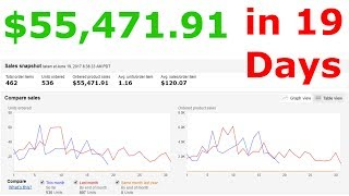 Amazon Drop Shipping | $55,471.91 in Sales in 19 Days Drop Shipping on Amazon