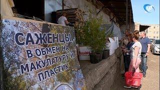 Участники экологической акции «Круг жизни» получили саженцы за сданную макулатуру