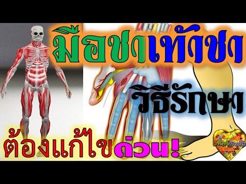 เส้นเลือดขอดและหลอดเลือดดำที่ขาที่