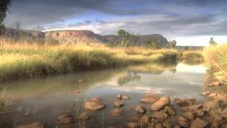 David Ireland's Trailer for Wild Australia, he is currently on the Great Barrier Reef in Cairns, shooting his latest series in 2D and Full HD 3D