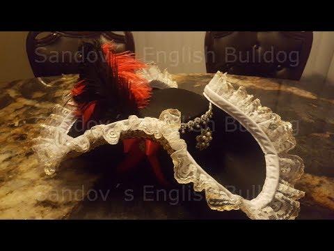 Halloween Disfraz Pirata * Enbellecimiento del sombrero y creacion de otros accesorios